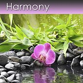 Harmony by Dr. Harry Henshaw