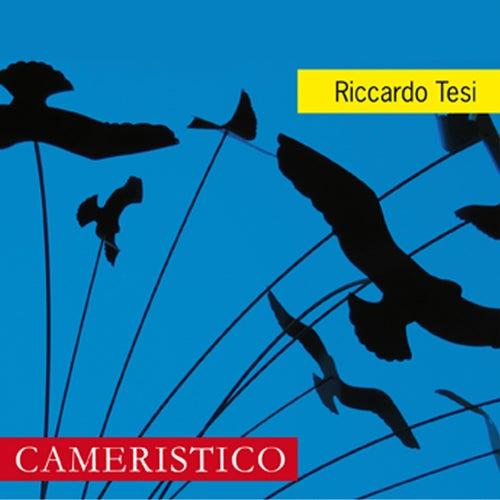 Cameristico by Riccardo Tesi