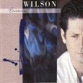 Brian Wilson von Brian Wilson