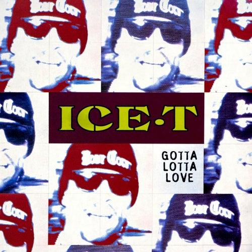 Gotta Lotta Love von Ice-T