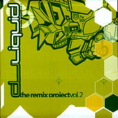 The Remix Project Vol. 2 by DJ Liquid