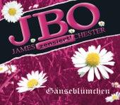 Gänseblümchen by J.B.O.