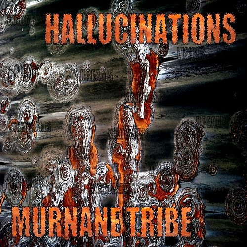 Hallucinations by Murnane Tribe