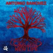 New Life by Antonio Sanchez