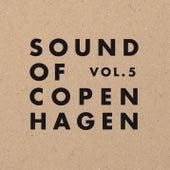 Sound Of Copenhagen Volume 5 by Various Artists