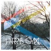 Harrys Gym by Harrys Gym