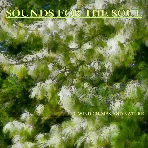 Sounds for the Soul 3:  Wind Chimes and Nature by Sounds for the Soul