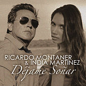 Déjame Soñar by Ricardo Montaner