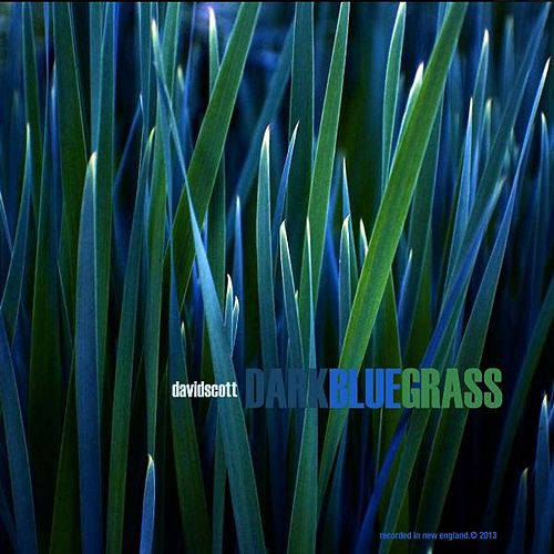 Dark Blue Grass by David Scott
