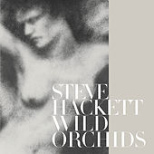 Wild Orchids (Re-Issue 2013) by Steve Hackett
