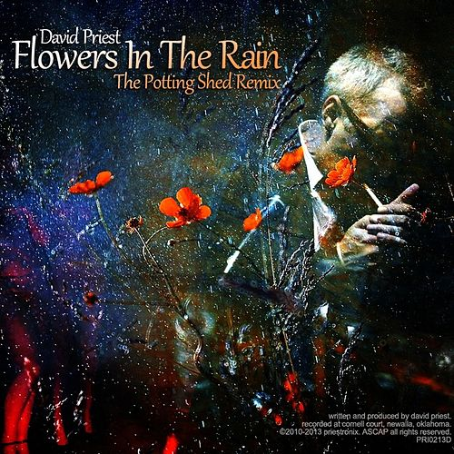 Flowers in the Rain (Potting Shed Remix) by David Priest