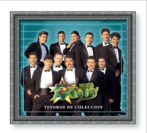 Tesoros De Coleccion by Banda Maguey