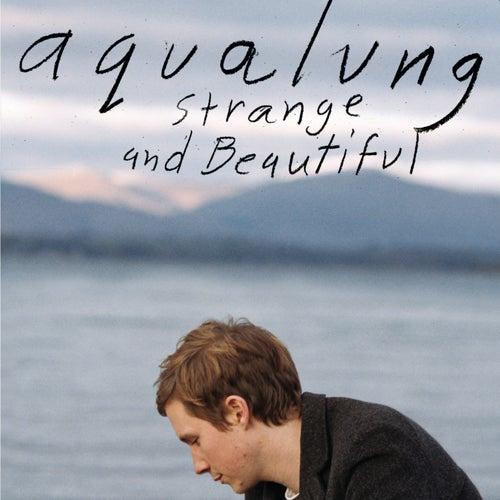 Strange & Beautiful by Aqualung