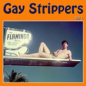 Gay Strippers Vol 1 by Various Artists