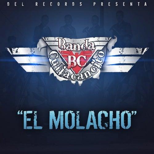 El Molacho by Banda Culiacancito