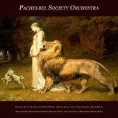 Pachelbel: Canon - Bach: Air On the G String - Albinoni: Adagio - Vivaldi: Cello Concerto - Walter Rinaldi: Adagio for Oboe, Piano Concerto & String Orchestra Works - Liszt: Love Dream - Mendelssohn: Wedding March by Various Artists