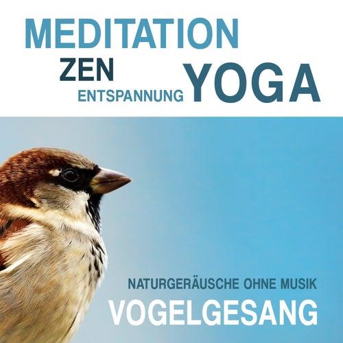 Meditation, Zen, Yoga und Entspannung mit Naturgeräuschen ohne Musik: Vogelgesang by Meditation Zen Yoga Entspannung