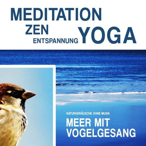 Meditation, Zen, Yoga und Entspannung mit Naturgeräuschen ohne Musik: Meer mit Vogelgesang by Meditation Zen Yoga Entspannung