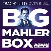 Big Mahler Box (A Big Bach Guild Set) by Various Artists