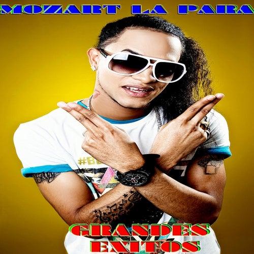 Grandes Exitos by Mozart La Para