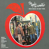 The Apple In Winter -irish Music In New York by Brian Conway