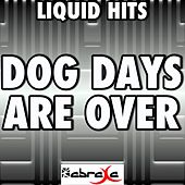 Dog Days Are Over (A Tribute To Florence and the Machine) by Liquid Hits