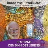 Bestimme den Sinn deines Lebens by Kurt Tepperwein
