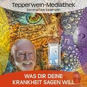 Was dir deine Krankheit sagen will by Kurt Tepperwein