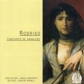 Rodrigo - Concerto De Aranjuez by Royal Philharmonic Orchestra