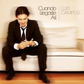 Cuando Llegaste Asi by Luis Campos