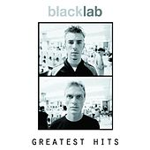 Greatest Hits by Black Lab