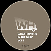 What Happens in the Dark Vol 1 by Various Artists