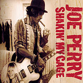 Shakin' My Cage by Joe Perry