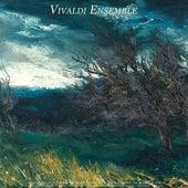 Albinoni: Adagio in G Minor - Pachelbel: Canon - Bach: Violin Concerto, Air On the G String & Jesu, by Various Artists