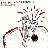 The Diamond by The Sound of URCHIN