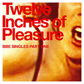 12 Inches Of Pleasure by Various Artists