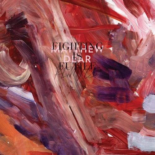 Fighting Is Futile Remixes von Matthew Dear