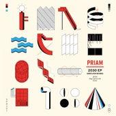 2030 - Single by Priam