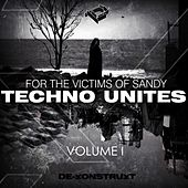 Techno Unites 'Victims of Sandy' Volume I by Various Artists