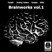 Brainworks, Vol.1 by Various Artists