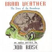 Brain Weather by Jon Rose