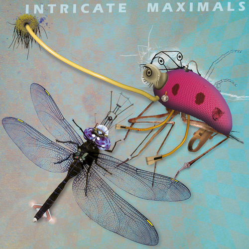 Intricate Maximals by Various Artists