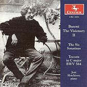 Busoni the Visionary, Vol. II by Various Artists