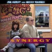 Synergy by Jim Hurst & Missy Raines