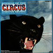 Sounds of the Circus-Circus Marches Volume 27 by Sounds Of The Circus South Shore Concert Band