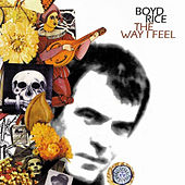 The Way I Feel by Boyd Rice