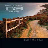 Bayshore Road by Peppino D'Agostino