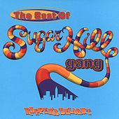 Rapper's Delight: The Best Of The Sugarhill Gang by The Sugarhill Gang