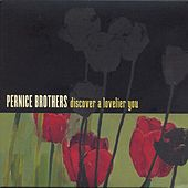 Discover A Lovelier You by Pernice Brothers