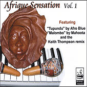 Afrique Sensation Vol. 1 by Various Artists